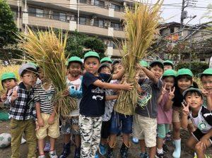 お米の収穫をしました!